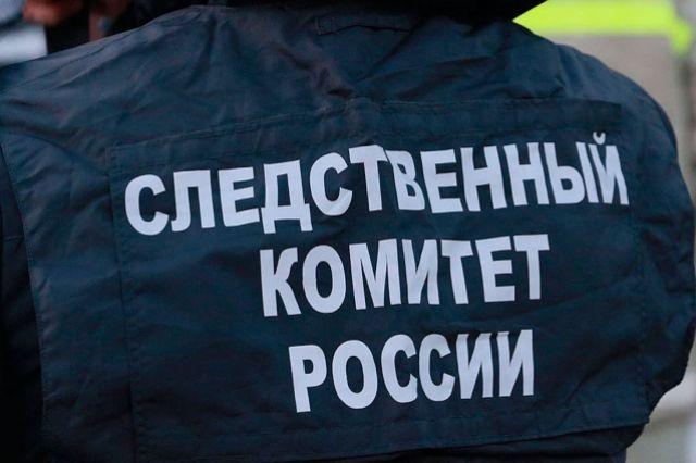 Дело о нападении на ребенка с ножом на особом контроле центрального аппарата СК РФ.
