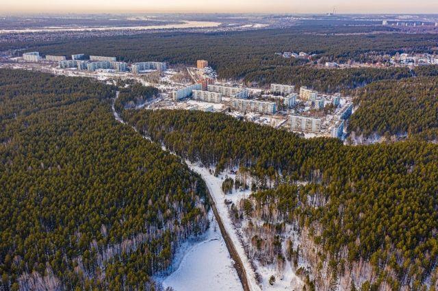 24 марта депутаты горсовета приняли обновлённый генплан Новосибирска. Согласно документу в зону многоэтажной застройки вошёл земельный участок в центре Ельцовского бора.