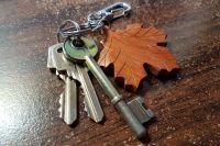 Чиновники из Курманаевского района лишили многодетную семью права на получение жилья.