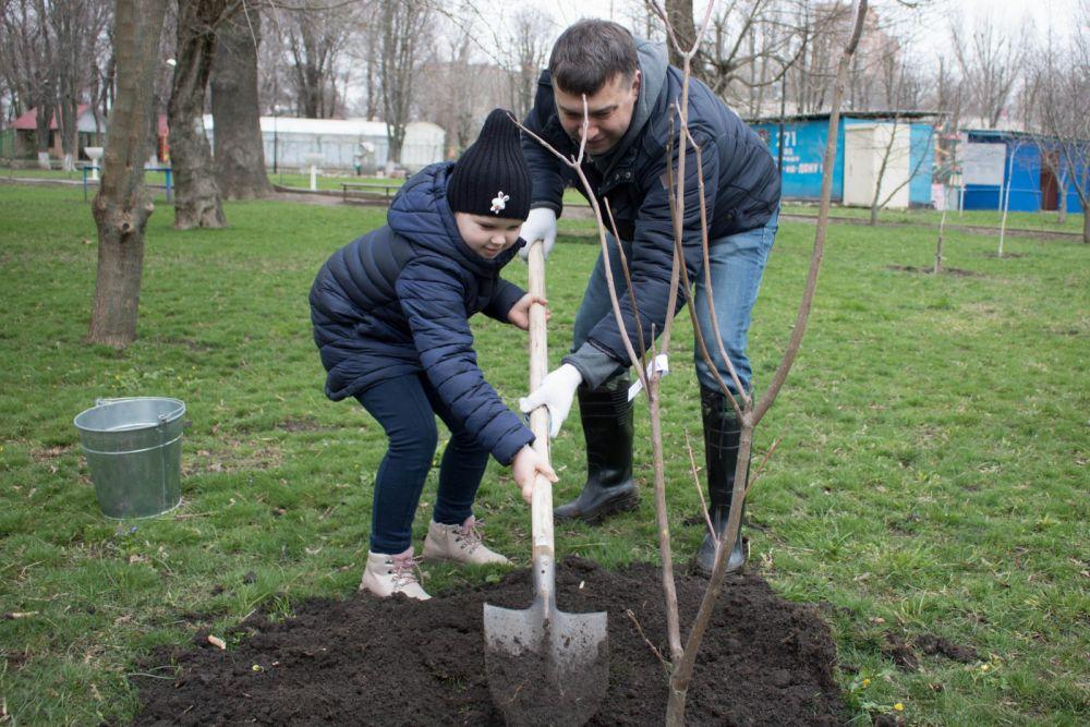 Глава минприроды Михаил Фишкин высаживал деревья вместе с учениками ростовской школы № 71