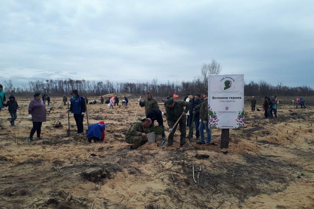 Жители Усть-Донецкого района присоединились к международной акции «Сад памяти»
