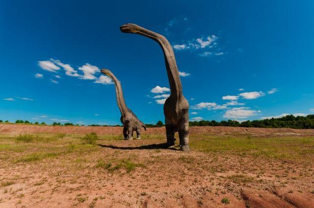 Ученым впервые удалось восстановить мозг динозавра