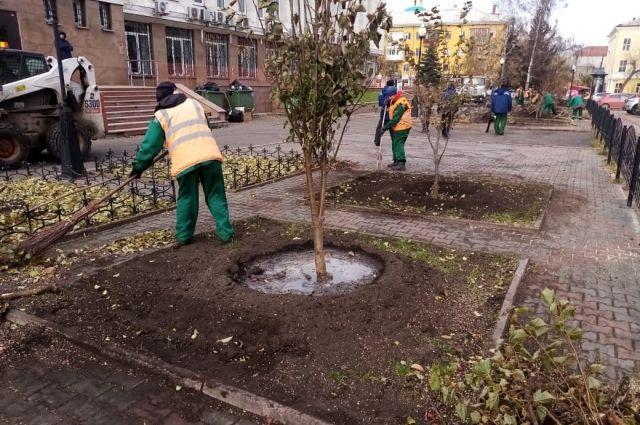 В этом году в Красноярске должно быть высажено не меньше 2,5 тысячи деревьев.