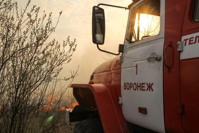 За сутки спасатели порядка 150 раз выезжали на вызовы о горении сухой травы.