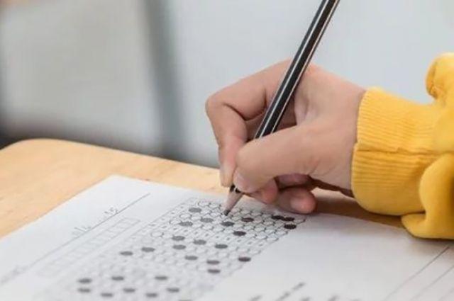 Выпускников школ освободили от обязательной сдачи ГИА: что делать ученикам