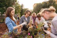 Общественное пространство «Сад 61°69°» сегодня является символом экологического качества городских территорий