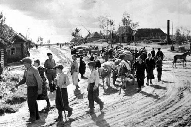 Во время оккупации Кубани люди в сезон выживали за счет того, что росло на земле.