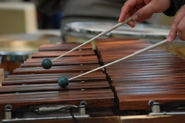 Барабаны и ксилофоны получат в этом году камчатские музыкальные школы