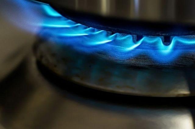 «Единая Россия» будет добиваться бесплатного подключения жителей к газу. Партия направит свои предложения Президенту.