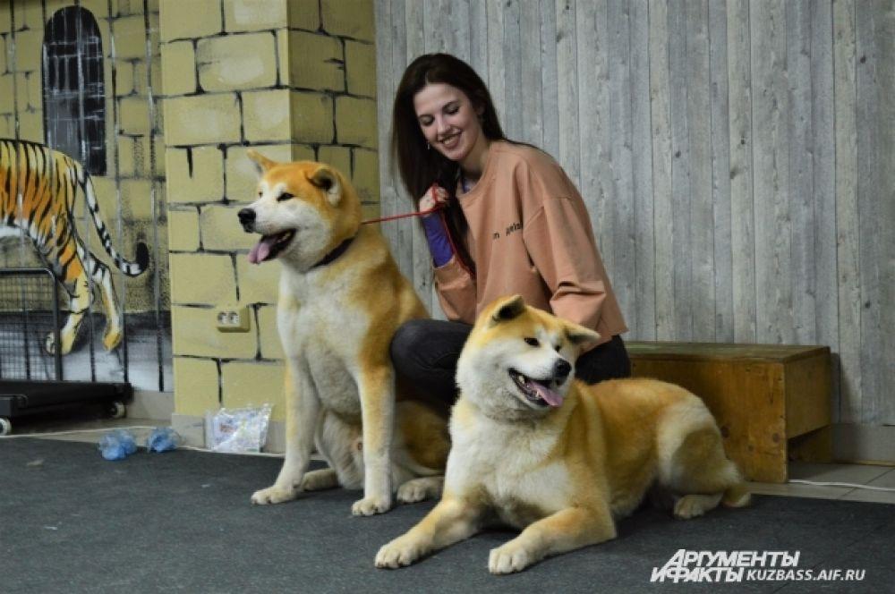 На «Пушистой субботе» можно было купить билет за 100 рублей и сфотографироваться с любым животным у профессионального фотографа.