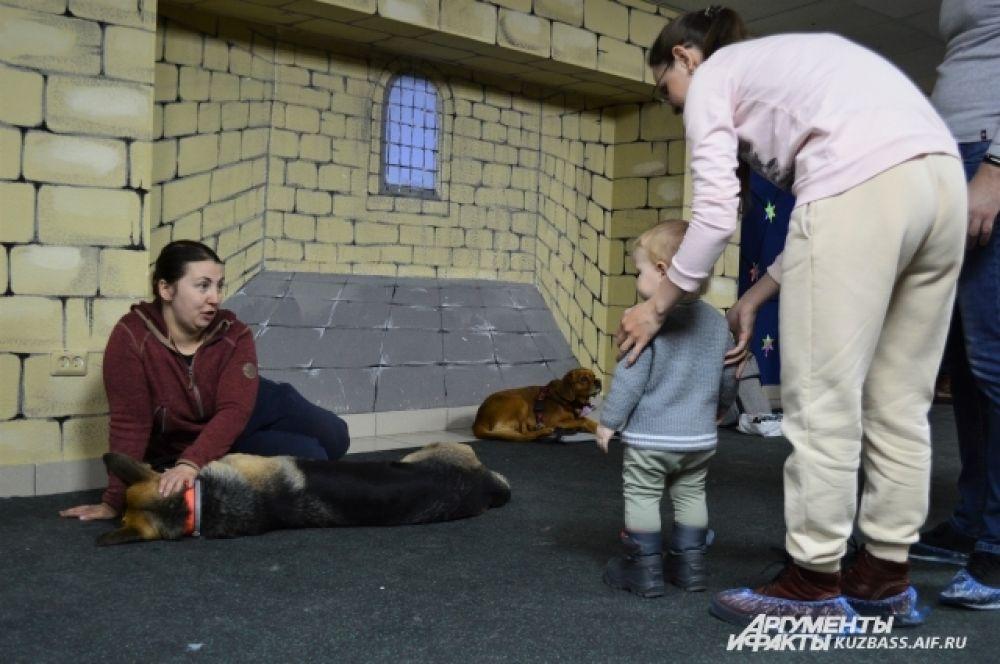Много людей пришло со своими детьми, которые активно интересовались животными.