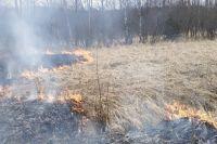 Возгорания не представляют угрозы жилым и хозяйственным постройкам