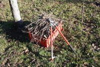При неправильной обрезке деревья могут заболеть.