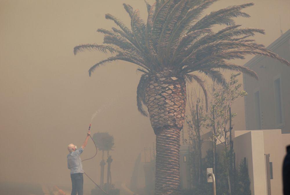 Житель поливает водой свою пальму, пока пожарные борются с пожаром.