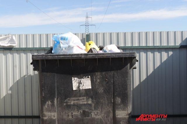 Владимир Ильиных считает, что город не должен тратить 20 млн рублей на решение проблем с мусором.