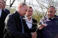 Владимир Путин прислушался к предложению Айдына Ширинова по поддержке питомников.