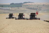 Долгосрочная стратегия развития  аграрной отрасли края направлена на рост благосостояния сельских жителей и сохранение села.