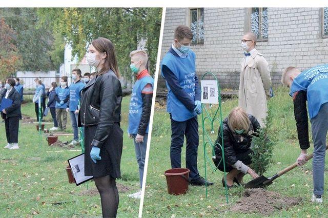 Ко Дню Победы на Аллее памяти высадят новые деревья в честь героев войны и основателей техникума.