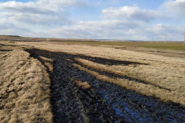 Прокуратура Новосергиевского рйона намерена взыскать 3,6 млн с виновника розлива нефти.