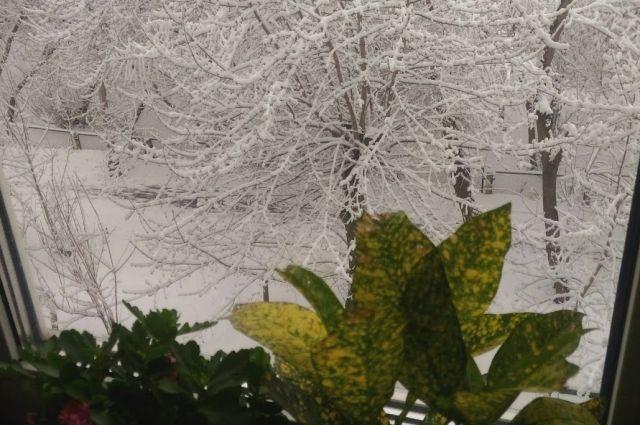 К выходным в Башкирии местами выпадет снег