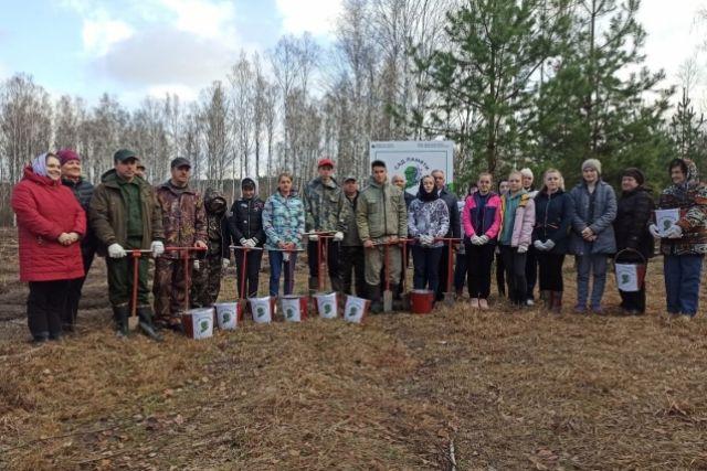 «Сад памяти». Моршанские лесоводы приняли участие в международной акции