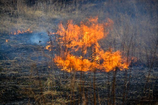 Введение режима означает, что жителям запрещено проводить любые пожароопасные работы.