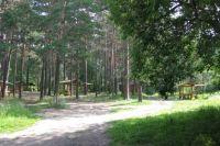 Заельцовский парк в Новосибирске закрыли на реконструкцию до лета 2022 года. Началась подготовка к запланированным работам, которые стартуют 15 мая. Об этом рассказали в пресс-центре мэрии города.