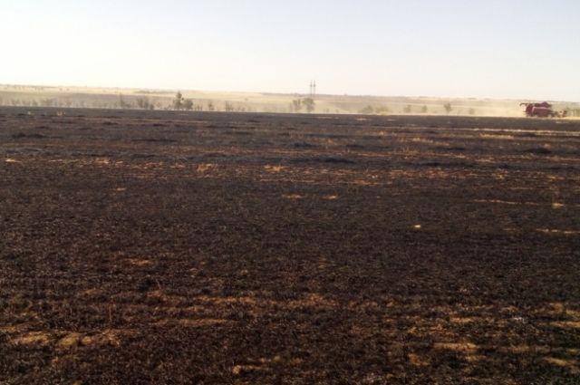 Огонь сразу перекинулся на стебли, а затем распространился по полю, где была неубранная пшеница.