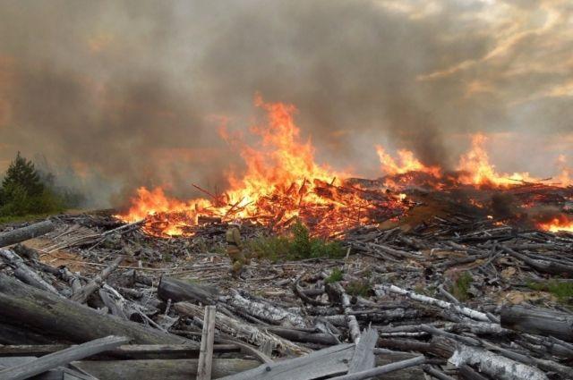 Площадь пожара составила 300 кв. м.
