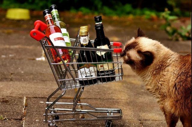 В Оренбуржье не будут объявлять запрет на продажу алкоголя в период майских праздников.