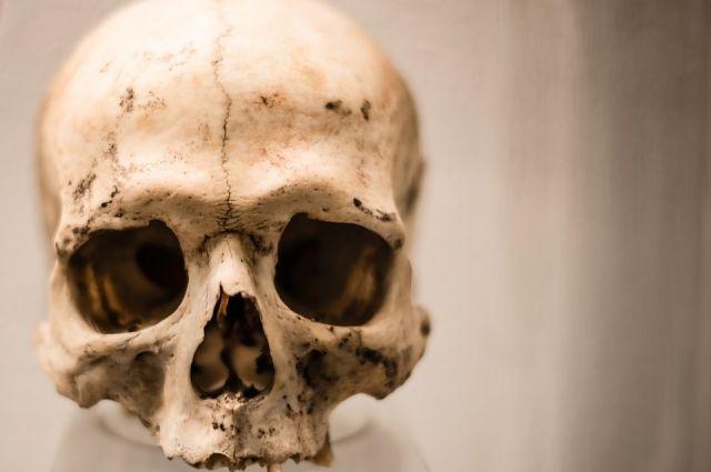В Сорочинском городском округе на берег реки Уран выбросило скелет человека.