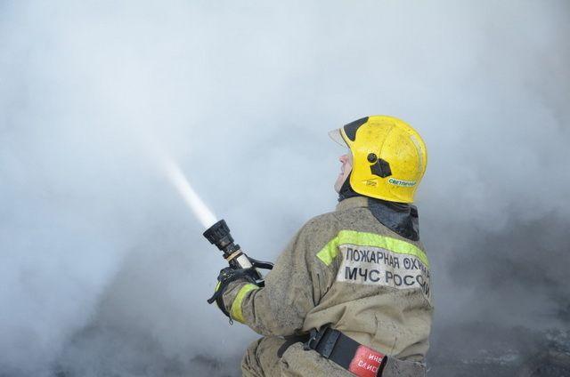 На Камчатке пожарные вынесли из огня пятерых кур и трех уточек