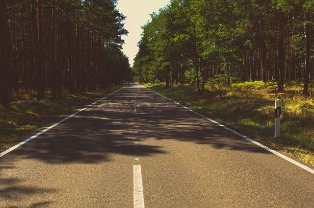 Ремонт дороги к Бузулукском бору проведут в 2021 году за почти 200 миллионов рублей.