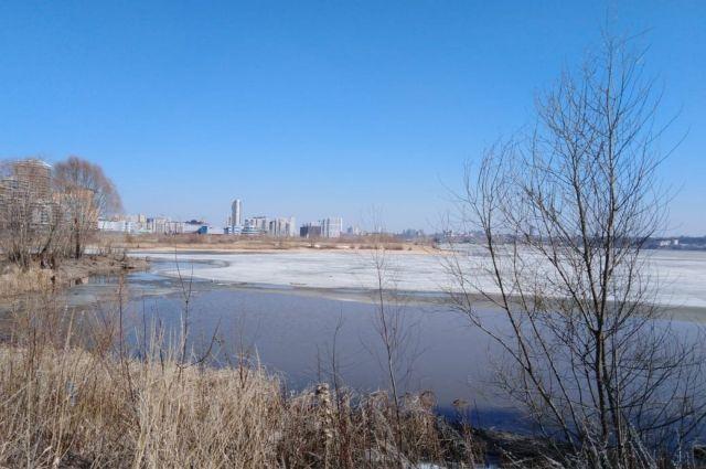 Воду хотят превратить в сушу, засыпав болотистые участки в районе развлекательного комплекса «Ривьера».