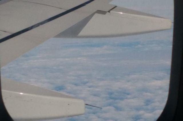 Пассажирку сняли с прибывшего в Сочи самолета за распитие спиртного