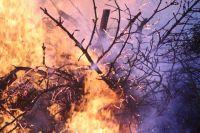 Административная ответственность в условиях особого противопожарного режима уже не предусматривает предупреждение, а влечет наложения штрафа