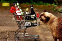 Запретят ли продажу алкоголя на майские праздники в Удмуртии?