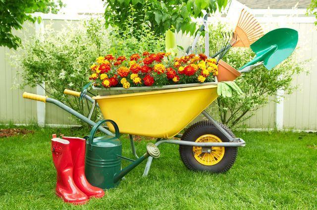 Ярмарки «Всё для сада и огорода» пройдут в Уфе 1 мая