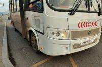 Автобус начал отъезжать от остановки, когда на дорогу упал ребенок.
