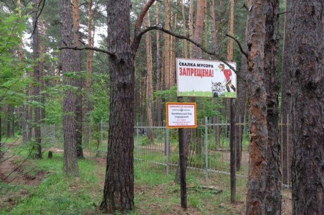 Кто-то связывает отставку замминистра со строительством детской хирургии в челябинском бору.