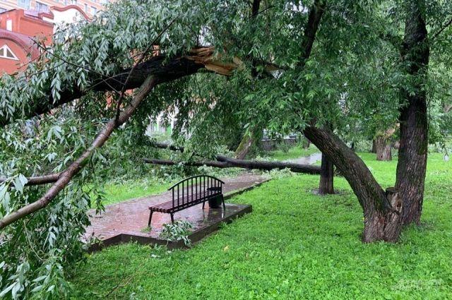В нескольких территориях повреждены электросети.