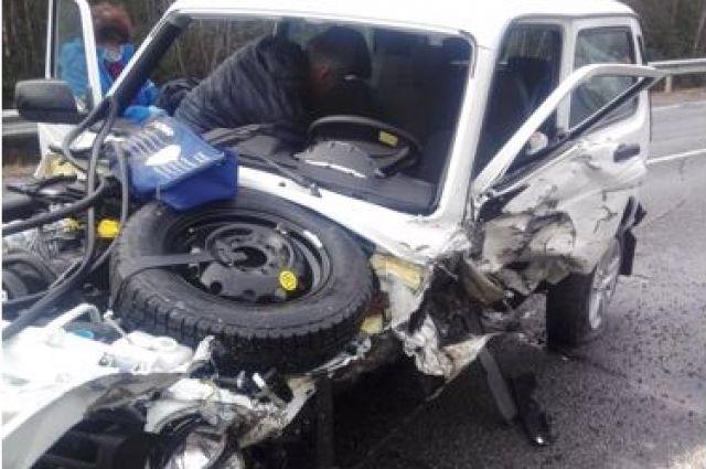 По предварительным данным, водитель  «Нивы» уснул за рулём.
