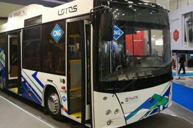 Обновить автобусный парк планируется в ближайшие 3 года.