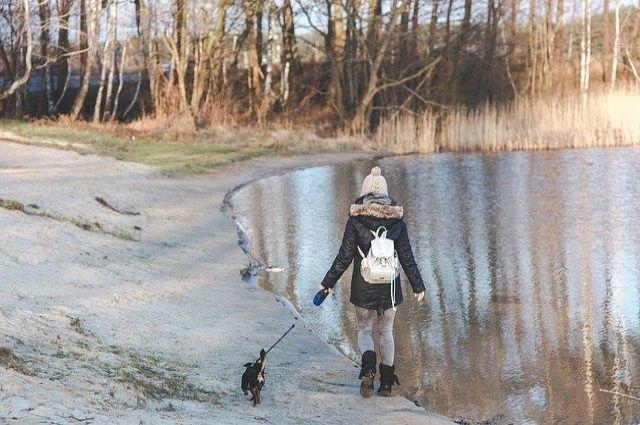Поиски начались ночью после того, как 12-летняя девочка не вернулась домой.