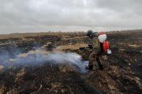 Огонь в пойменной части протоки Старый Иртыш на противоположном берегу от окружного центра вспыхнул около четырех часов утра