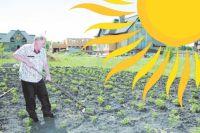 Чтобы не попасть в группу риска, правильно одевайтесь, когда работаете в огороде.