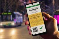 Погранслужбе оценили перспективы введения паспортов COVID-вакцинации