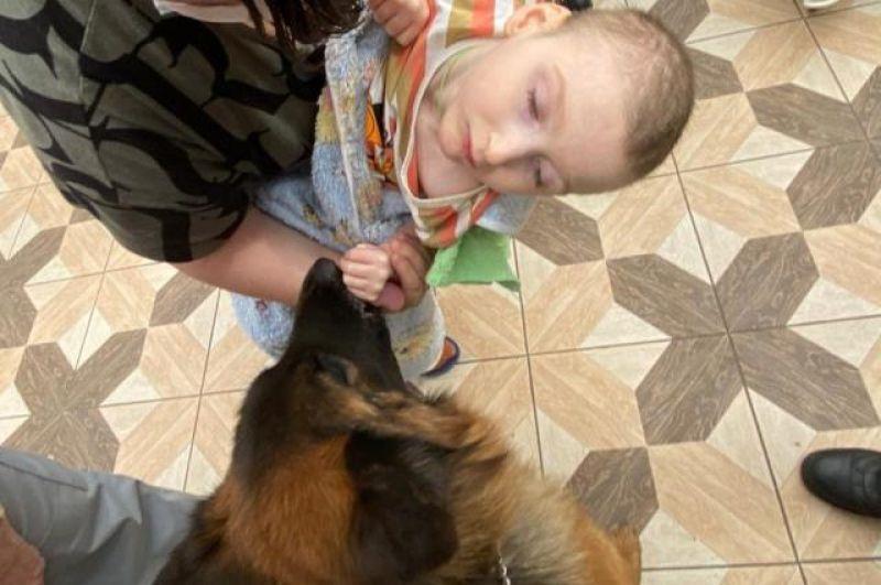 Собаки очень воспитанные, и маленькие пациенты,  а также их мамы, смогли пообщаться с животными и погладить их.