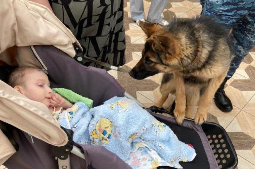 Опыт общения с детьми нужен и собакам,  они должны знать, что люди бывают разные.