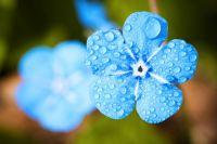Погода на 7 мая: в большинстве областей ожидаются дожди